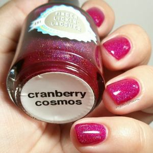 finger lickin lacquer  carnberry cosmos 2